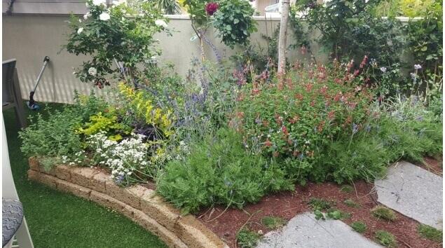 גינה של בית עם צמחים ודשא סינטטי