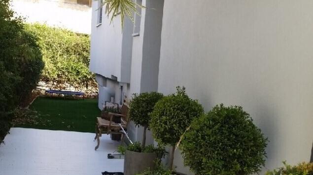 כניסה לבית מעוצבת בעציצים