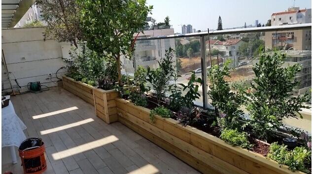 מרפסת גג מעוצבת בצמחים